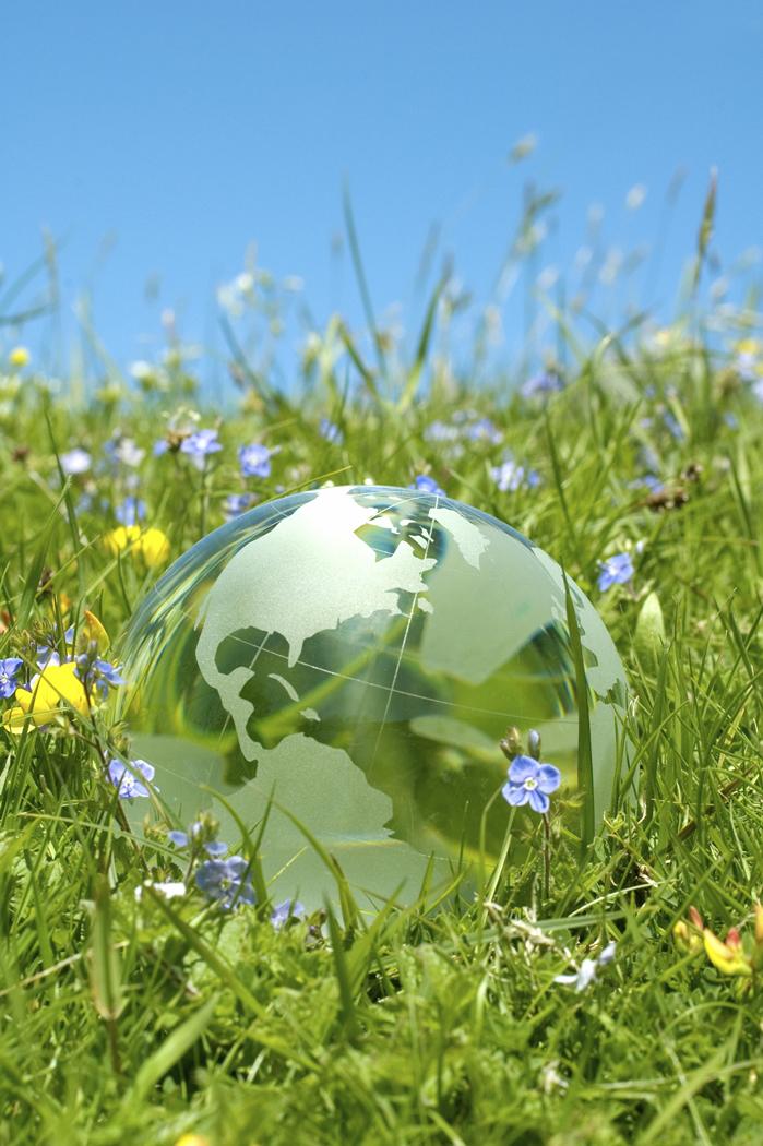 Environmental Organizations